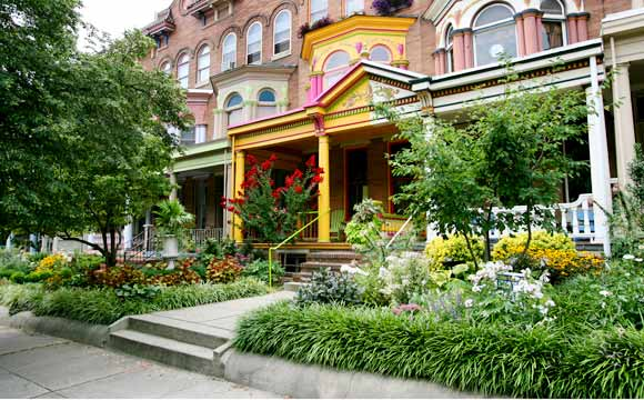 A brightly painted home in the Charles Village Neighborhood of Baltimore - Arianne Teeple